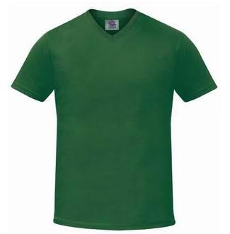 SW370 Starworld Slim Fit V Neck T